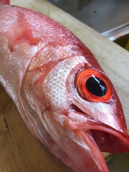 沖縄 三 大 高級 魚